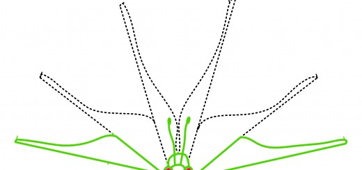 Mood-Driven-Robotic-Butterfly of Microsoft